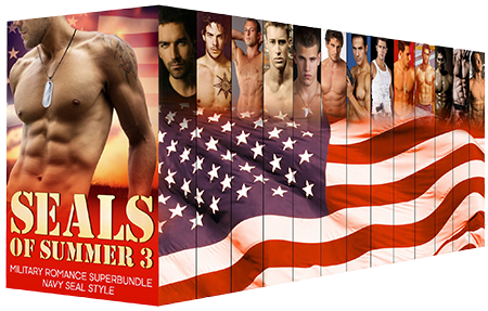 SEALS of Summer Boxset